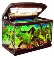 аквариум  крышкой 90 л