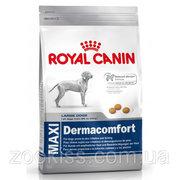 Royal Canin Maxi Dermacomfort 12кг.